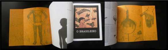 Os Brasileiros 17