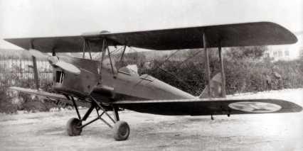 333-tiger_moth